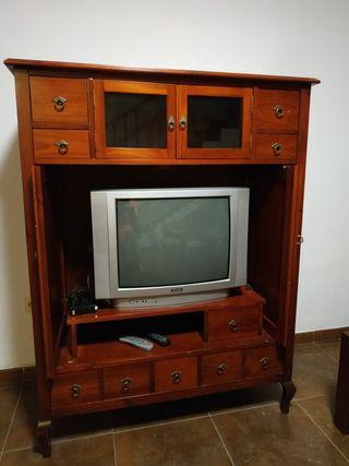 Mueble Salón con Televisión
