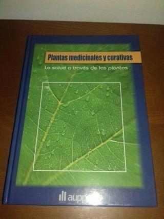 plantas medicinales curativas