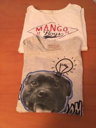 Camisetas Zara niña de segunda mano en Cáceres en WALLAPOP