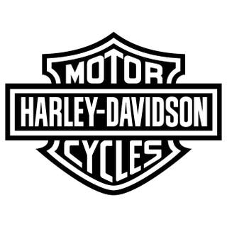 Pagetina Vinilo Harley Davidson