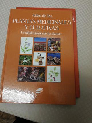 atlas de plantas medicinales y medicinas alternati