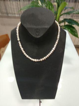 Expositor collares