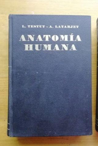 Anatomía humana T. 2 - Testut / Latarjet