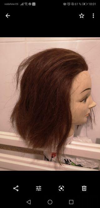 maniquí peluqueria