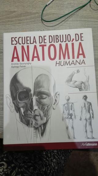 Escuela de dibujo de Anatomía humana.