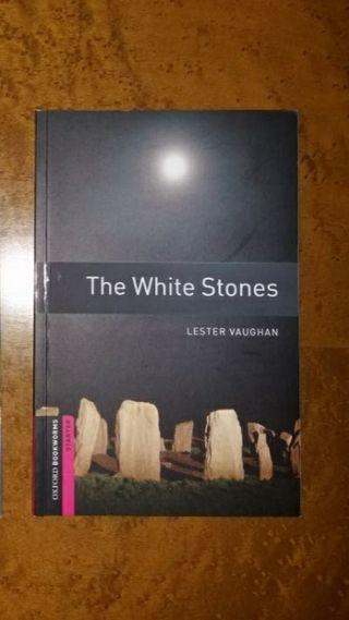 Libro en inglés para principiantes