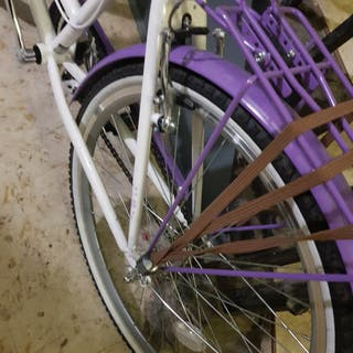 womans bike, viking paloma