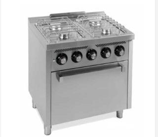Cocina profesional cuatro fuegos más horno