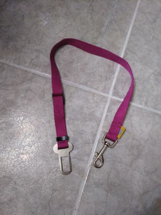 cinturón perros nuevo
