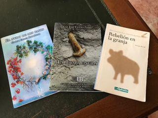 Lote de tres libros
