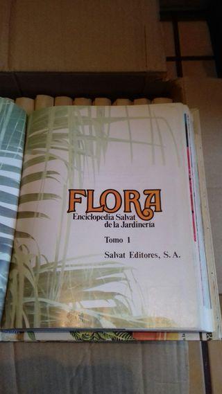ENCICLOPEDIA FLORAL