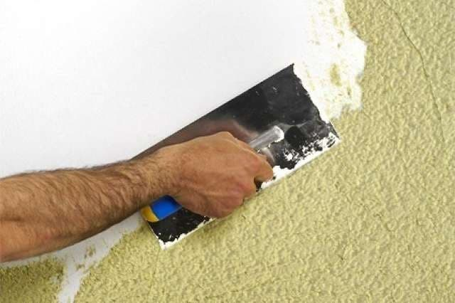 pintor profesional económico