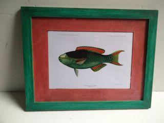 Cuadro pez verde