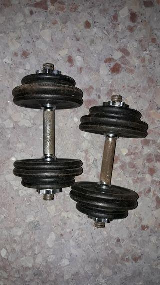 Mancuernas o pesas para musculación