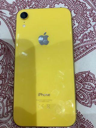 Apple XR6