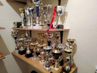Trofeos variados