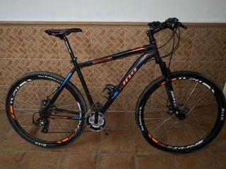 Bicicleta de montaña Bottechia FX 109