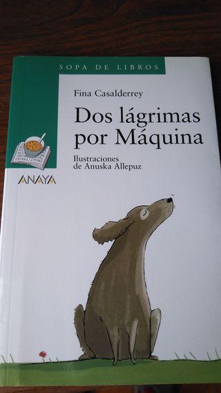 Libro de lectura primaria en castellano