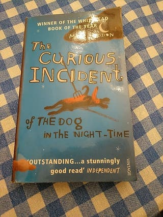 THE CURIOUS INCIDENT, OF THE DOG IN THE NIGHT-TIME