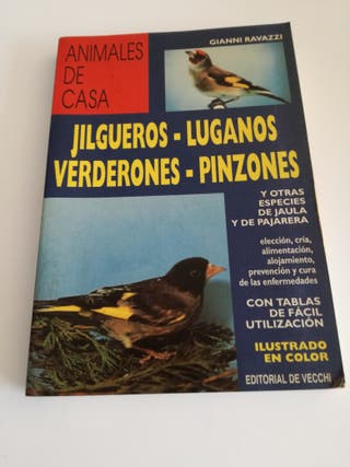 Guía sobre aves de jaula y pajarera