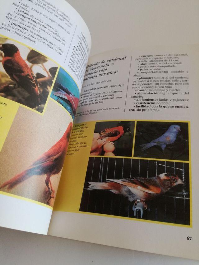 Libro sobre la hibridación de los pájaros