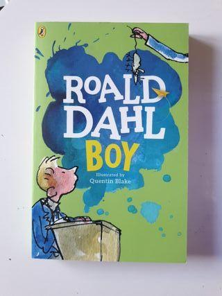 Libro en ingles Roald Dahl Boy