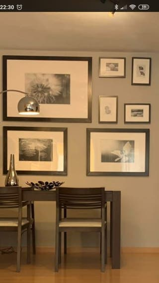 Lote siete cuadros fotografías artísticas.