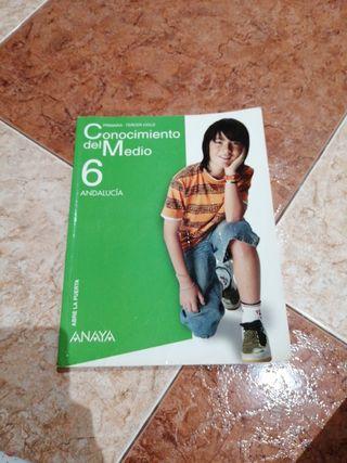 libro anaya conocimi3nto del medio 6 de primaria