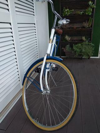 bicicleta holandesa