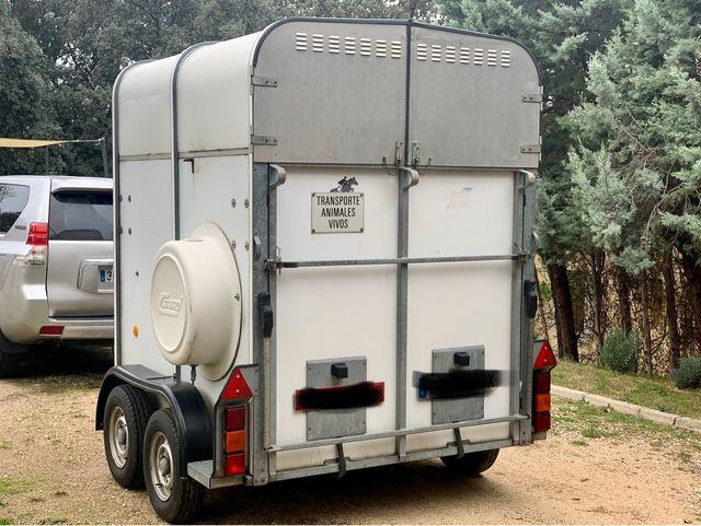 Remolque caballos Van Ifor Williams