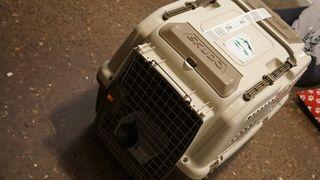 Canil - Transportin para perros Skudo 4