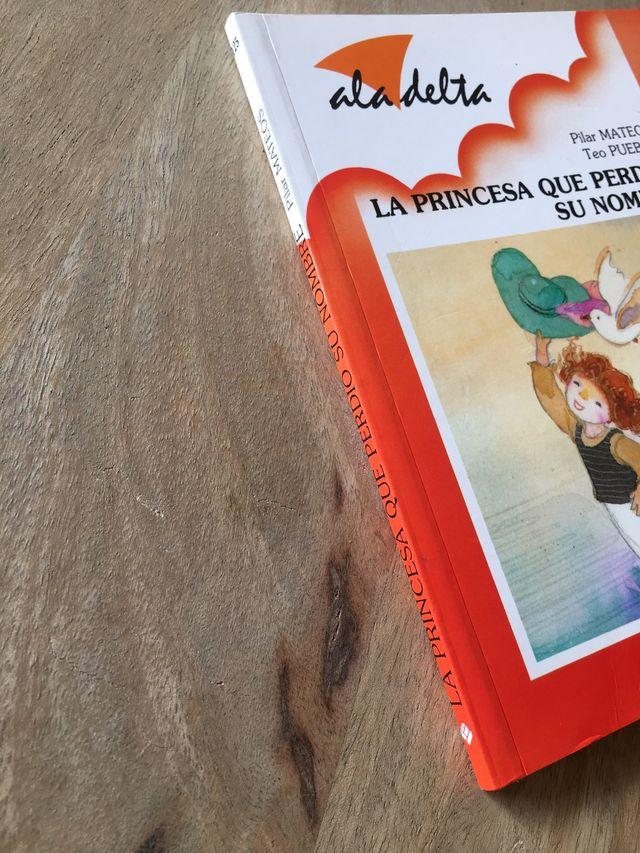 Libro infantil La princesa que perdió su nombre