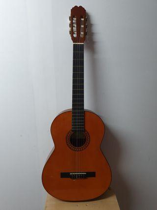 Guitarra española clásica ritmo