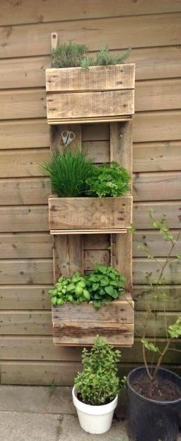 Estante/Jardinero de plantas o hierbas