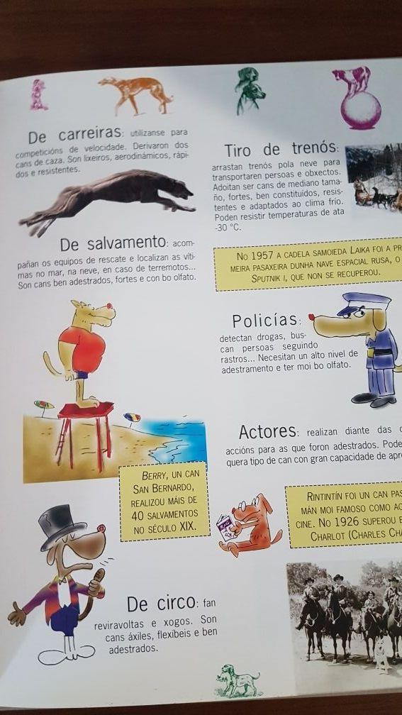 Libros infantiles sobre animales galego