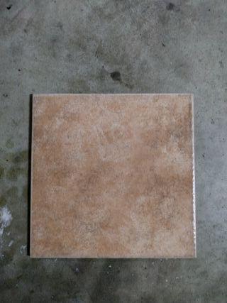 Baldosas suelo castellano( 11 piezas)