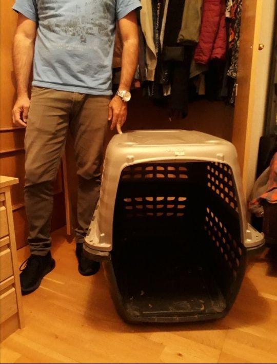 Transportin perro mediano kennel grande dog