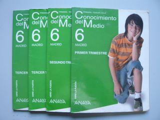 3 Libros texto Conocimiento Primaria 6