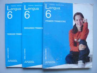 3 Libros texto Lengua Primaria 6