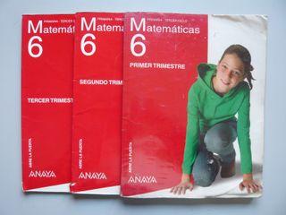 3 Libros texto Matemáticas Primaria 6
