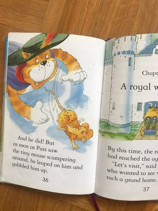 Libro infantil en inglés : Puss in Boots
