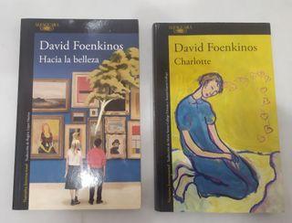 2 Libros David Foenkinos.
