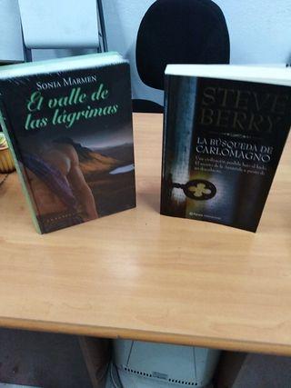 Novelas. EL VALLE DE LÁGRIMAS