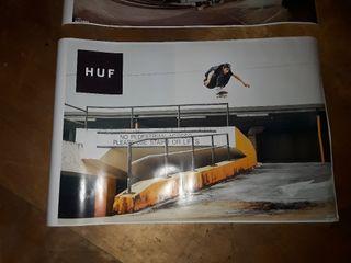 skate porter nuevos