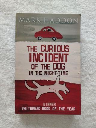 Novela misterio en inglés fácil