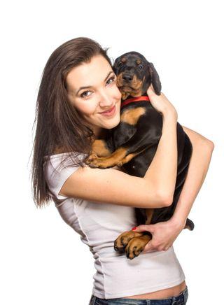 Book de fotos para mascotas, perros, gatos, aves.