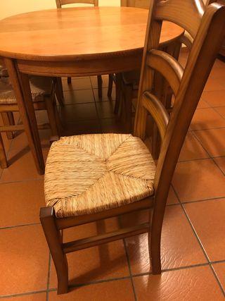 Vendo 8 sillas y regalo mesa comedor