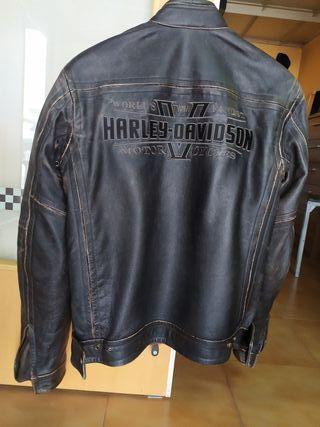 chaqueta de moto. harley davidson.