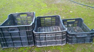 cajas agricultura