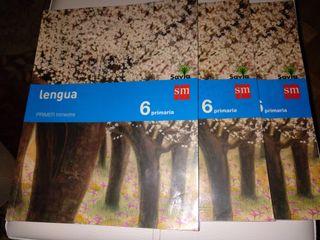 Libros Lengua 6º Primaria